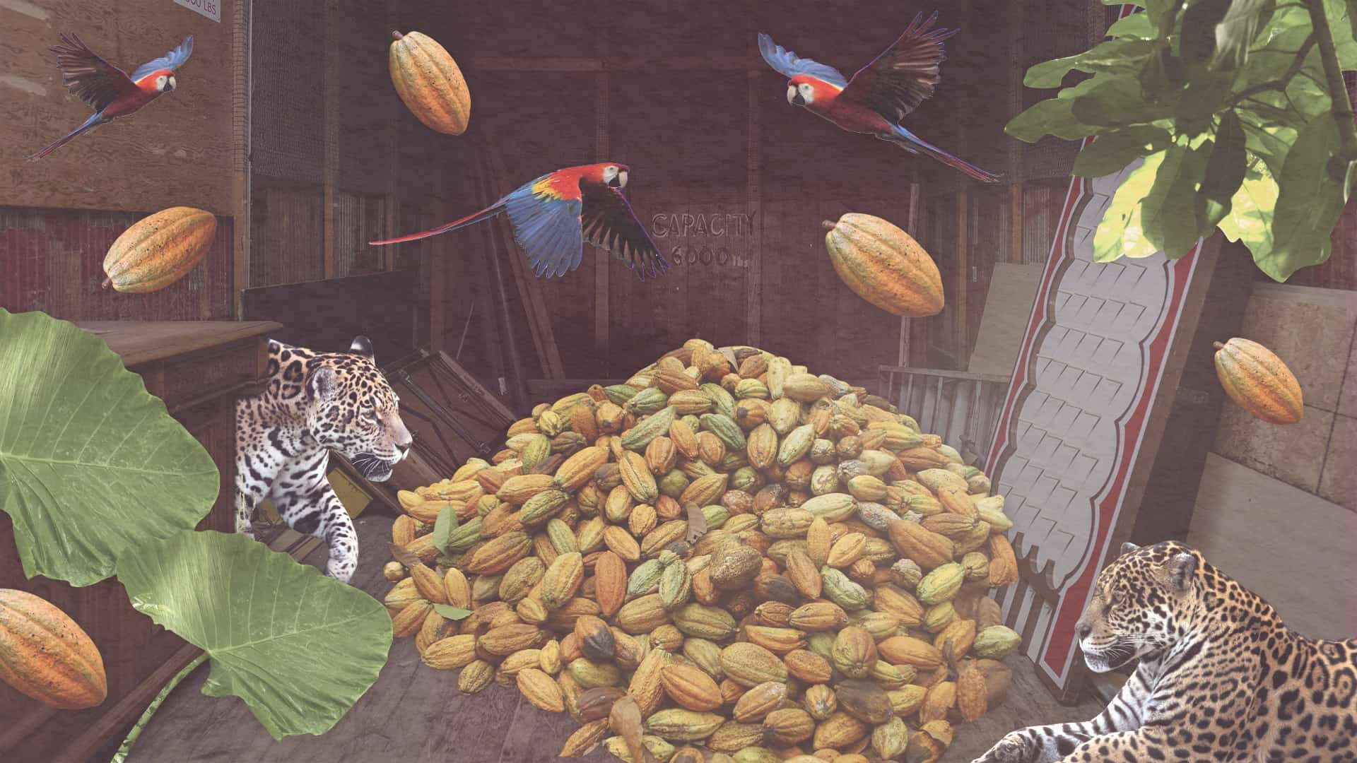 Image of an elevator with cacao beans, leopards, and exotic birds e